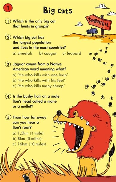 Usborne See Inside: Animal quiz cards
