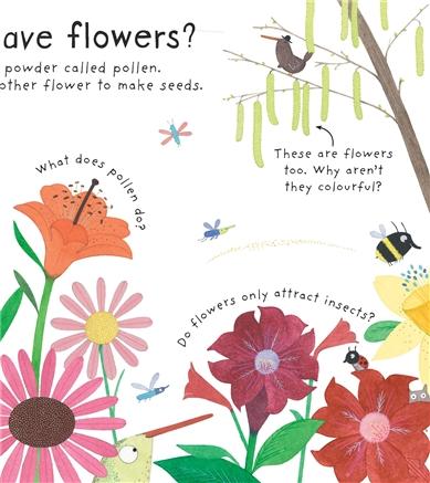 usborne see inside how do flowers grow?, Natural flower